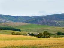 Ферма и урожаи в Глене Clova стоковое изображение rf