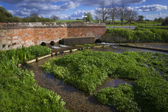 Ферма кресса воды Стоковая Фотография