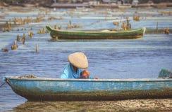 Ферма морской водоросли Стоковые Изображения RF