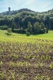 Ферма на холме Uetliberg, Цюрихе, Швейцарии стоковая фотография