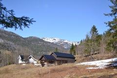 Ферма норвежцев весной Стоковое Изображение RF