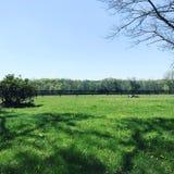 ферма дня Стоковая Фотография