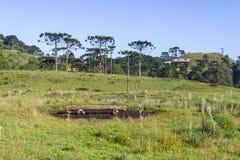 Ферма дома Стоковое Изображение