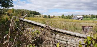 Ферма Онтарио стоковые фотографии rf