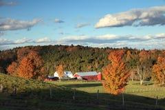 ферма осени Стоковая Фотография