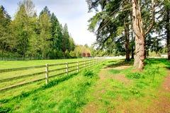 Ферма лошади сельской местности стоковые фотографии rf