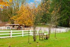 Ферма лошади с белой загородкой и листьями падения цветастыми. Стоковое Изображение RF