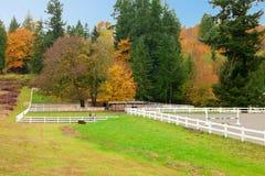 Ферма лошади с белой загородкой и листьями падения красочными. Стоковая Фотография