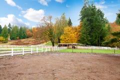 Ферма лошади с белой загородкой и листьями падения цветастыми. Стоковые Изображения