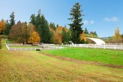 Ферма лошади с белой загородкой и листьями падения цветастыми. Стоковое Фото