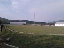 Ферма лошади Стоковое Фото