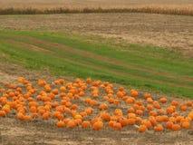 ферма падения Стоковое фото RF