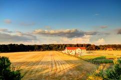 Ферма пшеницы Стоковое Изображение RF