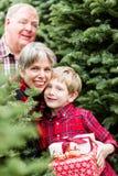 Ферма рождественской елки Стоковые Изображения