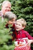 Ферма рождественской елки Стоковое Изображение