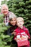 Ферма рождественской елки Стоковое Изображение RF