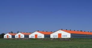 ферма самомоднейшая Стоковое Фото