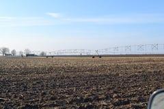 Ферма семьи Стоковая Фотография RF