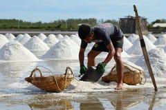 Ферма соли Стоковое Изображение RF