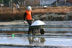 Ферма соли Стоковое фото RF