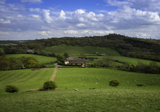 Ферма страны обнаружила местонахождение witin frelds Бирмингема Стоковое Изображение RF