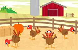 Ферма Турции Стоковые Фото