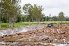 Ферма фермера в сезоне дождей стоковая фотография