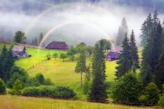 Ферма цветка в тумане Стоковые Изображения