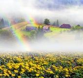 Ферма цветка в Украине Стоковые Изображения