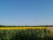 Ферма энергии ветра Стоковое Изображение RF