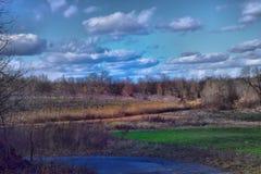 Ферма Яблока стоковое фото