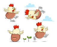 Ферма яичка цыпленка животная Стоковая Фотография RF