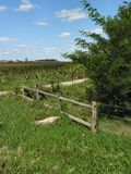 ферма 1282 старая Стоковые Изображения RF