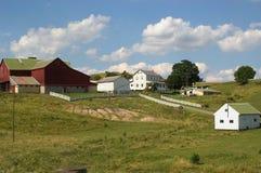 ферма amish Стоковая Фотография