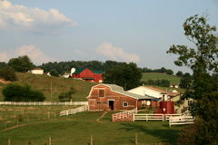 ферма amish Стоковые Фото