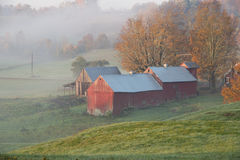 Ферма Jenne в восходе солнца Стоковые Фотографии RF