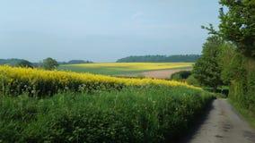 Ферма Winterborne Стоковые Изображения