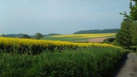 Ферма Winterborne Стоковые Изображения RF