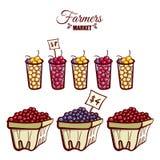 Фермеры выходят зрелые ягоды вышед на рынок на рынок Стоковая Фотография