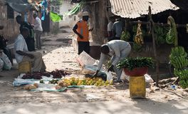 Фермеры Занзибара, Танзании продавая плодоовощи на улице Стоковые Фотографии RF
