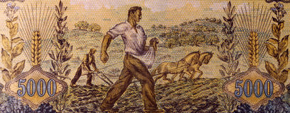 Фермеры засуя и вспахивая Стоковое фото RF