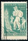 Фермеры и ухо пшеницы Стоковое Изображение