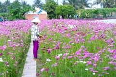Фермеры полют в утре весны eco цветочного сада Стоковые Фото