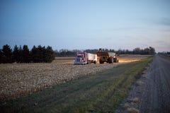 Фермеры работая на ноче для сбора урожая маиса Стоковая Фотография