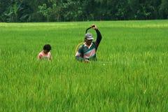 Фермеры Стоковая Фотография RF
