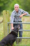 Фермер в поле с собакой стоковое фото rf