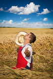 Фермер в поле Стоковая Фотография RF