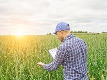 Фермер в рубашке шотландки контролировал его примечания поля и сочинительства Стоковое Изображение RF