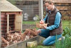 Фермер девушки работая в саде с цветками Плантация da Стоковое Фото