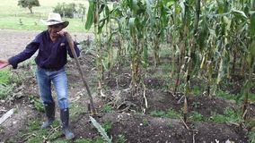 Фермер, лейборист, работник сток-видео